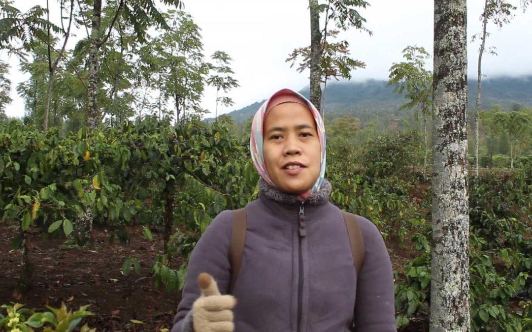 Anomali Coffee: Tampilkan Kedai Kopi di Setiap Sudut Wisata