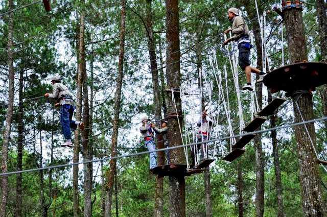 Bandung Treetop Adventure Park 5 Tempat Outbound di Bandung Rekomendasi Dyakarra